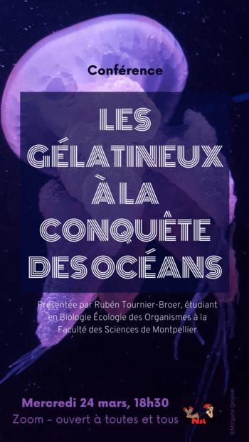 Conférence – Les gélatineux à la conquête des océans